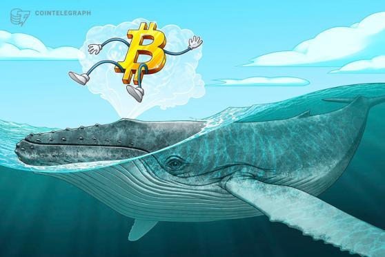 Otro depósito de 84 millones de dólares plantea la pregunta: ¿Por qué las ballenas de Bitcoin en Corea están vendiendo?