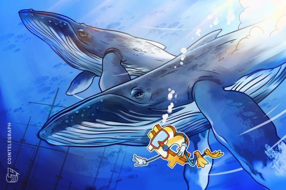 La volatilidad del precio de Bitcoin se dispara cuando las ballenas venden en cada nuevo máximo histórico